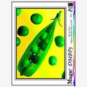 Magic DMBP5 Universal Ink Jet Backprint Film 5 mil