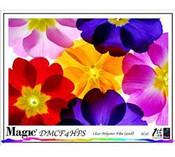 Magic DMCF4EN Clear Film for Dye Gloss 4 mil